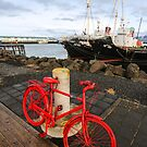 Reykjavik: Capital Contrasts by Pippa Carvell