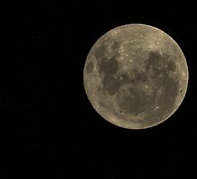 Full Moon - 27th Jan. 2013 by brendanscully