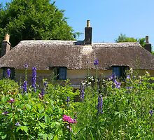 Hardy's Cottage 2 by ColinBoylett