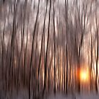 Winter Sunset Impressions by Richard McAleese