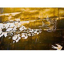 Dirty Bird Photographic Print