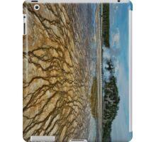 Yellowstone Blood Vessels iPad Case/Skin