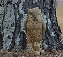 Ground Owl by rosaliemcm