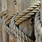 Rope by rosaliemcm