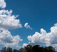 Clouds 7 by Fran Woods