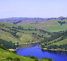 Rolling Green Hills by photoartful
