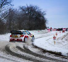 WRC Monte Carlo 2013 by RomainChalaye