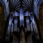 Organ, St Giles Cathedral by Sue Fallon Photography