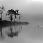 Loch Ard Morning Mist by Maria Gaellman