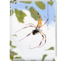 Golden Silk Orb Weaver iPad Case/Skin