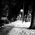 snow path by Alessiocorner