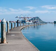 tauranga harbour by Anne Scantlebury