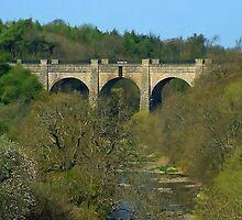 Linn's Mill Aqueduct II by Tom Gomez