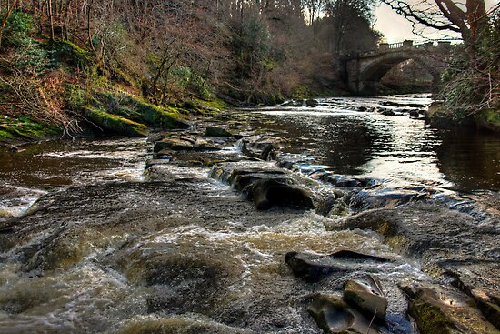 The River Almond by Tom Gomez