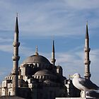 Blue Mosque in Istanbul, Turkey by Kirk D. Belmont Photography