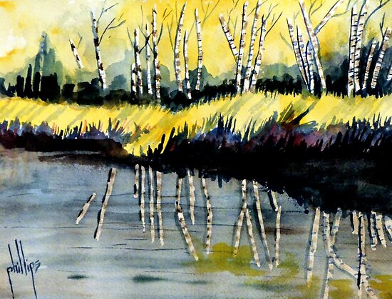 River Birch Grove by Jim Phillips
