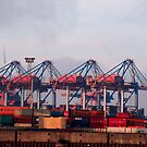 Hamburg Container Harbor (Germany) by vivendulies