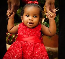 Christmas for Chloe by Marcelle Raphael