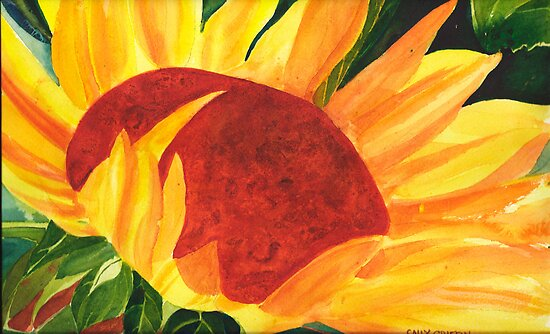 Summer Sun by Sally Griffin