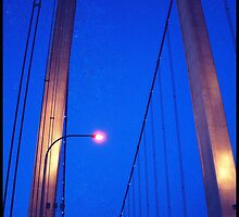 Carquinez Bridge by Andrea  Muzzini