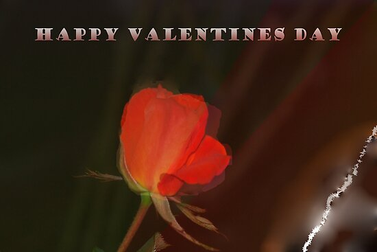 Happy Valentines Day with red rose by ♥⊱ B. Randi Bailey