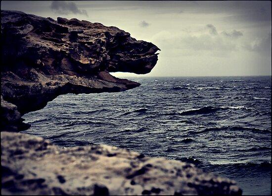 Stone dragon by andreisky