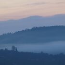 Mist in the Early Morning Valley by vivendulies