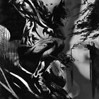 The Dark Knight by Susanah Grace