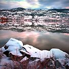 An Okanagan Winter by Tara  Turner