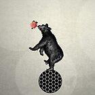 bear balance by beverlylefevre