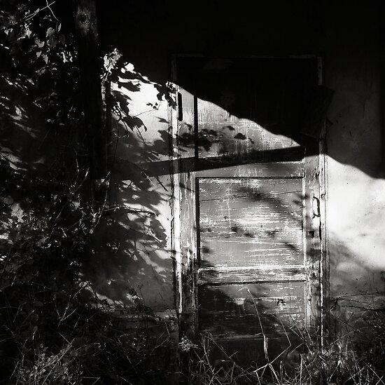 trespassing by Nikolay Semyonov