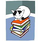 Cat on multicoloured books by LizPoulain