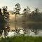 Sunrise over Lake Hampton, North Carolina by Matt Tilghman