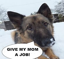 German Shepherd Give My Mom A Job by LadyTrojan