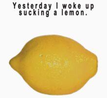 """90's Alternative """"Yesterday I woke up sucking a lemon"""" Rock  by wakpowwallop"""