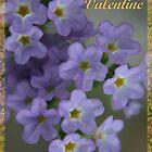 Be My Valentine by Robyn Selem
