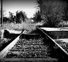 No more trains by Nigel Butfield