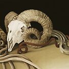 Vanitas, 2004 by Bridgeman Art Library