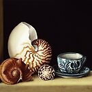 Still life with Nautilus, 1998  by Bridgeman Art Library