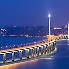 Freeway at night in Hong Kong by kawing921