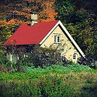 Cottage in the Green by lilu1012