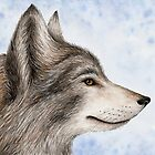 Eastern Canadian Wolf by Mariya Olshevska
