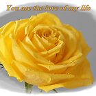 Yellow Rose Love Card by hummingbirds