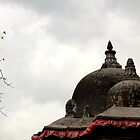 A Tinge Of Red by sudhirnair