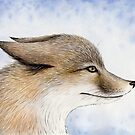 Swift Fox by Mariya Olshevska