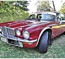 Jaguar XJ 6  by George Petrovsky