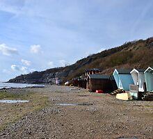 Monmouth Beach-Lyme Regis.Dorset UK by lynn carter