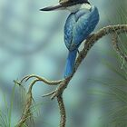 Sacred Kingfisher &amp; Pine  by Christopher Pope