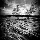 Cold Wave by Radharc21