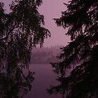 Finnish Lake at Night (Purple Haze) by seymourpics